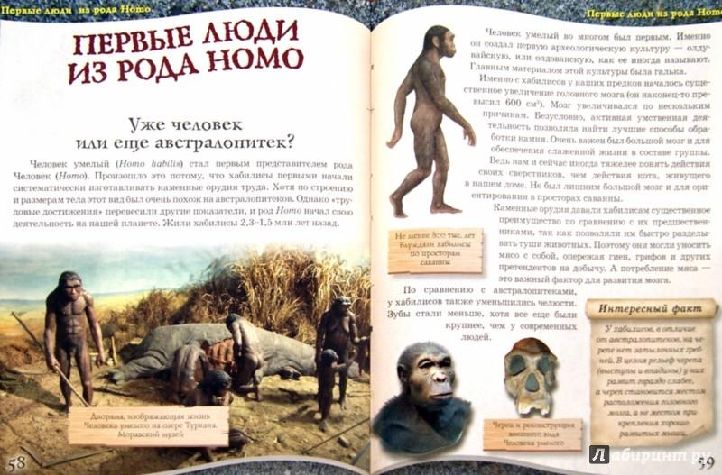 Иллюстрация 1 из 27 для От обезьяны к человеку - К. Задорожный | Лабиринт - книги. Источник: Лабиринт