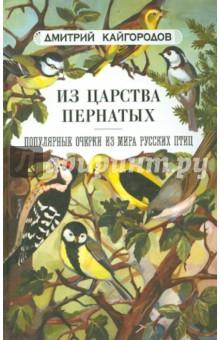 кайгородов дмитрий алексеевич химки биография