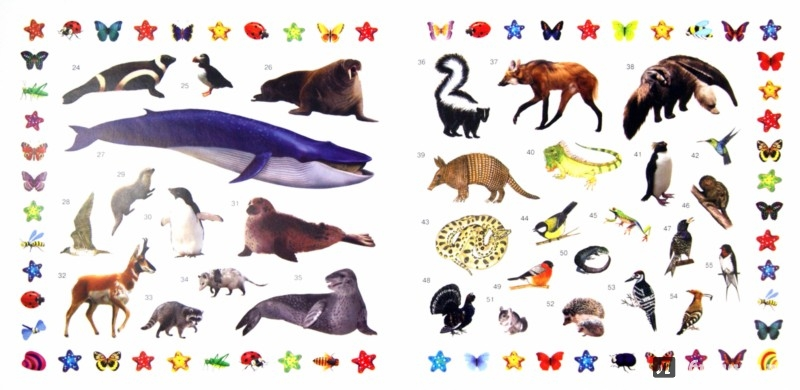 Иллюстрация 1 из 4 для Звери, птицы, рыбы | Лабиринт - книги. Источник: Лабиринт