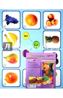 Витамины в продуктах питания. Комплект плакатов. ФГОСБиология. Экология (10-11 классы)<br>В комплекте 4 плаката: Фрукты, Овощи, Зерновые и бобовые, Белковая пища с методическим сопровождением. <br>Формат А3.<br>Бумага мелованная глянцевая.<br>