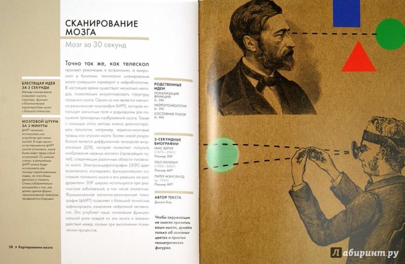 Иллюстрация 1 из 21 для Мозг - Джарретт, Сет, Бекинштейн, Бор | Лабиринт - книги. Источник: Лабиринт