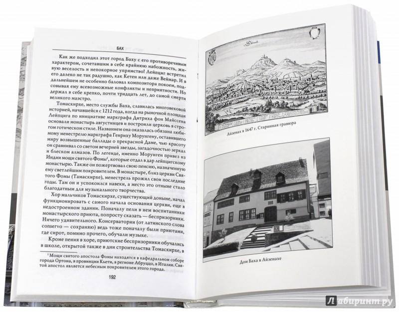 Иллюстрация 1 из 16 для Бах - Анна Ветлугина | Лабиринт - книги. Источник: Лабиринт