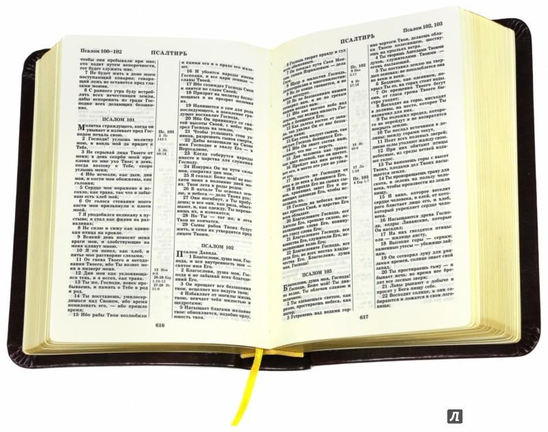 Иллюстрация 1 из 8 для Библия (каноническая) | Лабиринт - книги. Источник: Лабиринт