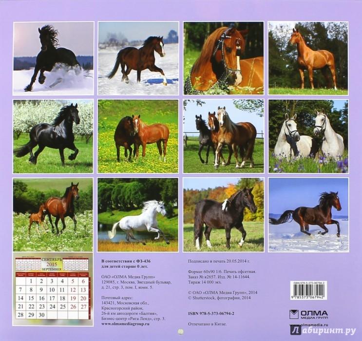 Фото для календаря с лошадьми