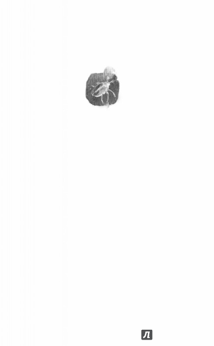 Иллюстрация 1 из 18 для Кошки ходят поперек - Эдуард Веркин | Лабиринт - книги. Источник: Лабиринт
