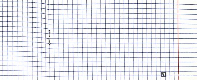 Иллюстрация 1 из 4 для Тетрадь 18 листов, клетка, пластиковая обложка, салатовая (120004)   Лабиринт - канцтовы. Источник: Лабиринт