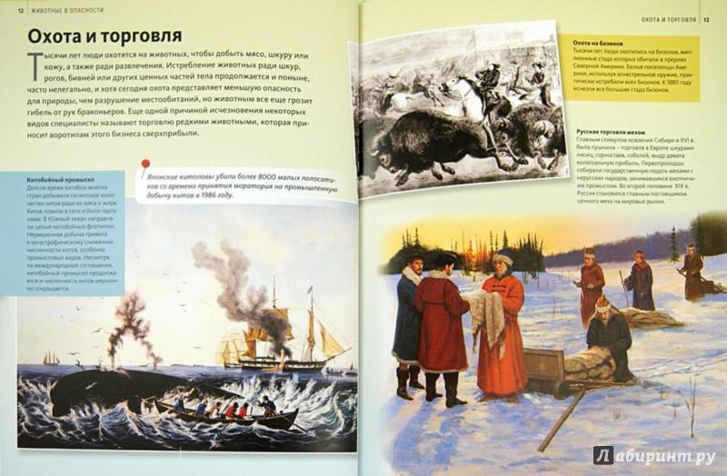 Иллюстрация 1 из 14 для Животные в опасности   Лабиринт - книги. Источник: Лабиринт