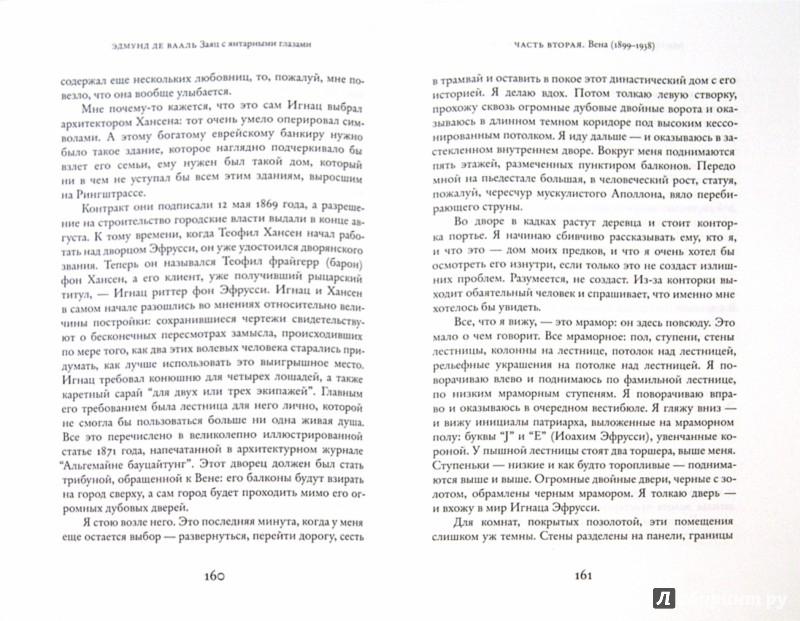 Иллюстрация 1 из 13 для Заяц с янтарными глазами: скрытое наследие - Эдмунд Вааль   Лабиринт - книги. Источник: Лабиринт