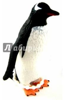 Пингвин Генту (Gentoo Penguin) (387184)