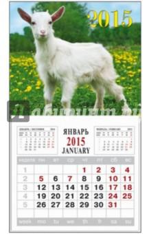 """Календарь на 2015 год """"Символ года-5"""" (на магнитном креплении) (35763-24)"""