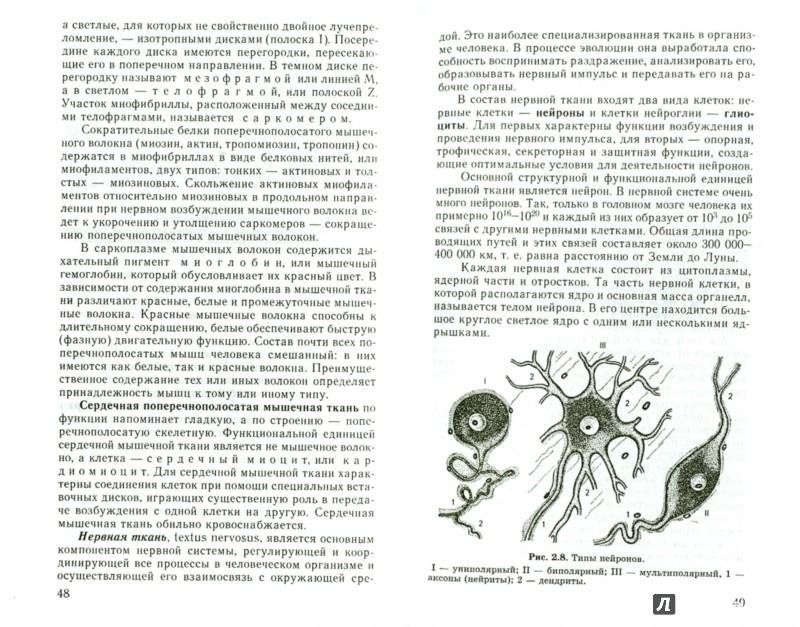 Иллюстрация 1 из 15 для Анатомия человека. Учебник для студентов - Рудольф Самусев | Лабиринт - книги. Источник: Лабиринт