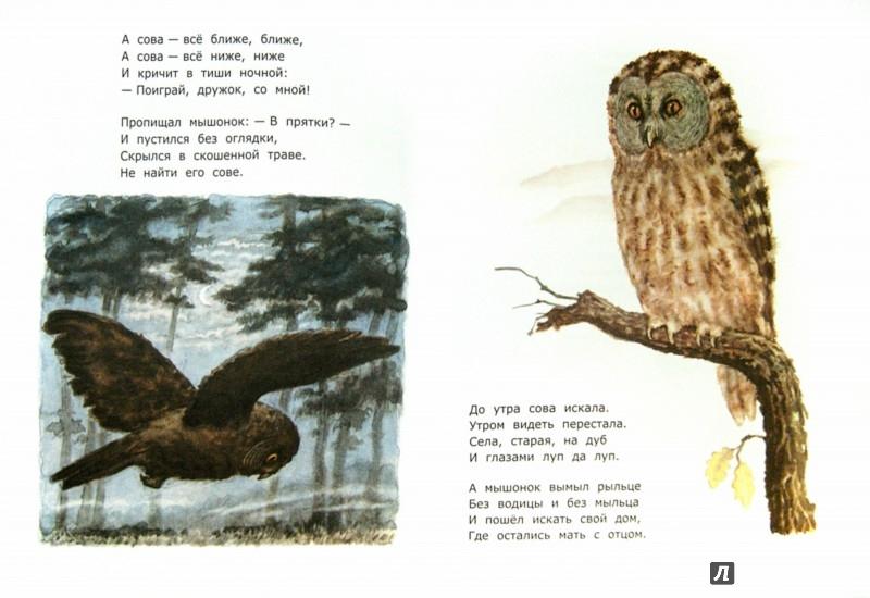 Иллюстрация 1 из 35 для Сказки - Самуил Маршак | Лабиринт - книги. Источник: Лабиринт