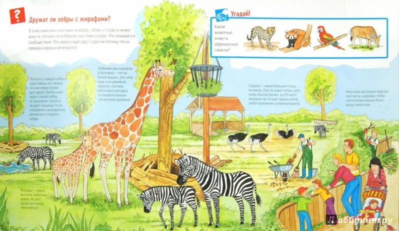 Иллюстрация 1 из 29 для Животные в зоопарке - Забине Шук | Лабиринт - книги. Источник: Лабиринт