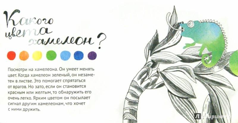 Иллюстрация 1 из 12 для Цвет, привет! (интерактивная книга) - Марина Ложкина   Лабиринт - книги. Источник: Лабиринт
