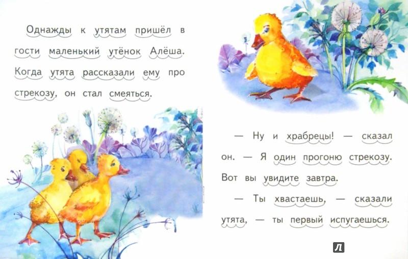Иллюстрация 1 из 7 для Храбрый утёнок - Борис Житков | Лабиринт - книги. Источник: Лабиринт