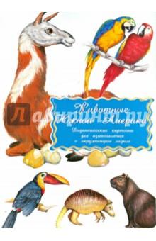 Дидактические карточки Животные Южной АмерикиЗнакомство с миром вокруг нас<br>Знакомимся с гоацином, ягуаром, обезьяной-ревуном, туканом, шиншиллой, муравьедом, ленивцем, колибри, ламой, обезьяной-игрункой, игуаной, кайманом, капибарой, анакондой, попугаем арой, броненосцем.<br>В комплекте 16 карточек.<br>Разглядывая карточки, играя с ними, ваш ребенок не только обогатит свой багаж знаний об окружающем мире, но и научится составлять предложения, беседовать по картинкам, классифицировать и систематизировать предметы.<br>Кроме того, с подобными карточками можно придумать множество интереснейших игр!<br>Именно такие карточки можно рекомендовать родителям для познавательных игр с детьми и занятий по методике Глена Домана.<br>Размер карточек 25х15 см.<br>Для детей дошкольного возраста.<br>