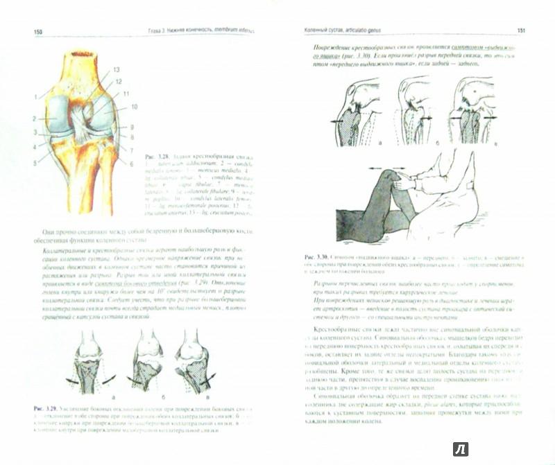 Иллюстрация 1 из 3 для Топографическая анатомия и оперативная хирургия - Анатолий Николаев | Лабиринт - книги. Источник: Лабиринт
