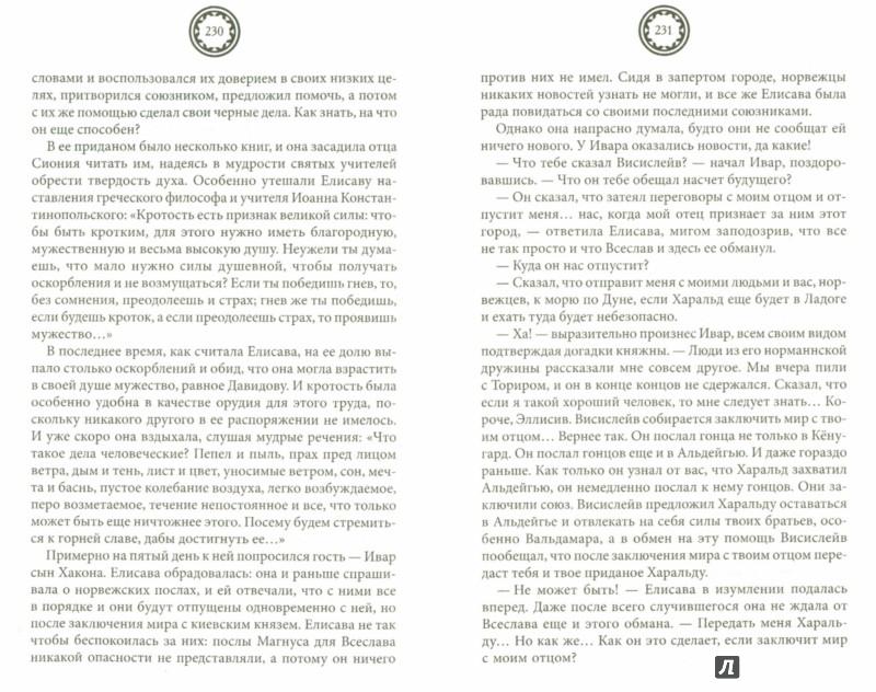 Иллюстрация 1 из 9 для Сокровище Харальда - Елизавета Дворецкая   Лабиринт - книги. Источник: Лабиринт