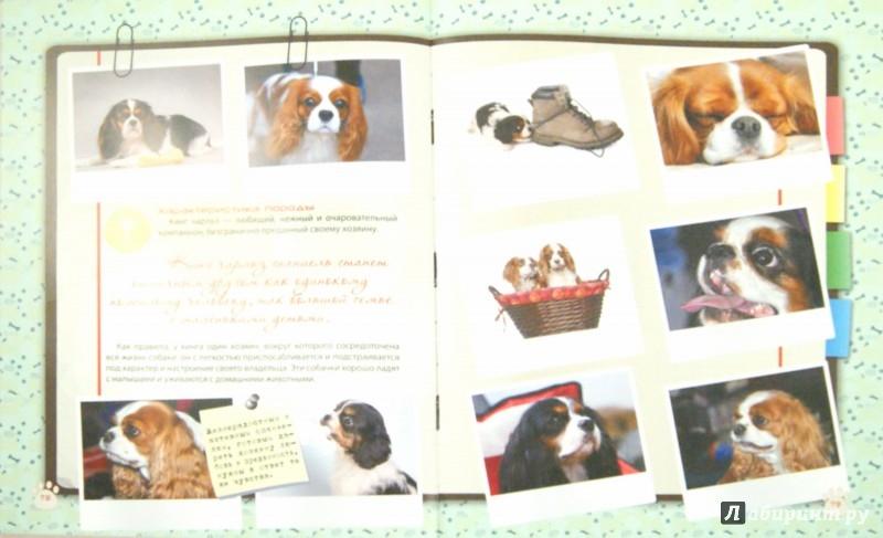 Иллюстрация 1 из 11 для Большая энциклопедия о маленьких собачках - Любовь Вайткене | Лабиринт - книги. Источник: Лабиринт