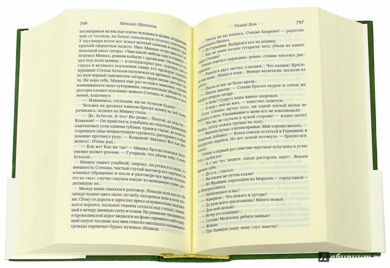 Иллюстрация 1 из 24 для Тихий Дон - Михаил Шолохов | Лабиринт - книги. Источник: Лабиринт