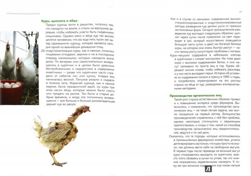 Иллюстрация 1 из 19 для Быть или не быть... Опыт датского органического сельского хозяйства - Боллесен Древес | Лабиринт - книги. Источник: Лабиринт