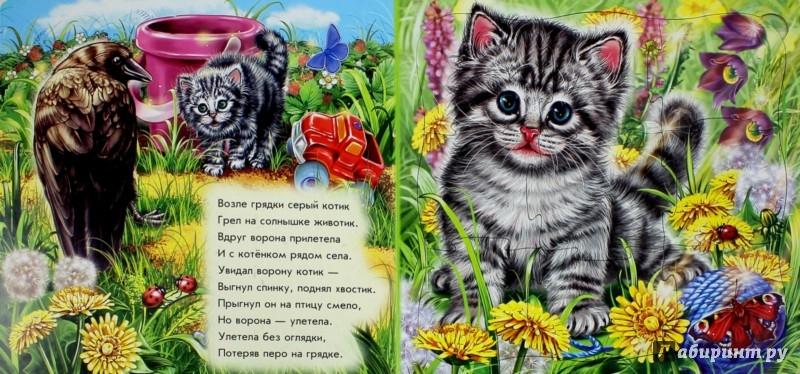 Иллюстрация 1 из 12 для Мои милые зверята - Евгений Новицкий | Лабиринт - игрушки. Источник: Лабиринт