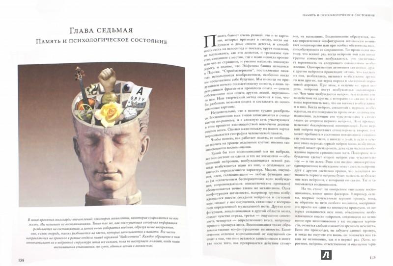 Иллюстрация 1 из 8 для Как работает мозг - Рита Картер | Лабиринт - книги. Источник: Лабиринт