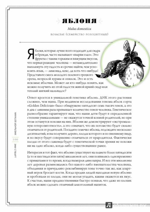 Иллюстрация 1 из 48 для Хмельной ботаник. Путеводитель по алкогольной флоре планеты - Эми Стюарт | Лабиринт - книги. Источник: Лабиринт