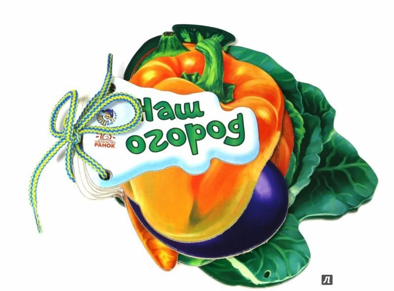 Иллюстрация 1 из 26 для Наш огород - Ирина Солнышко | Лабиринт - книги. Источник: Лабиринт