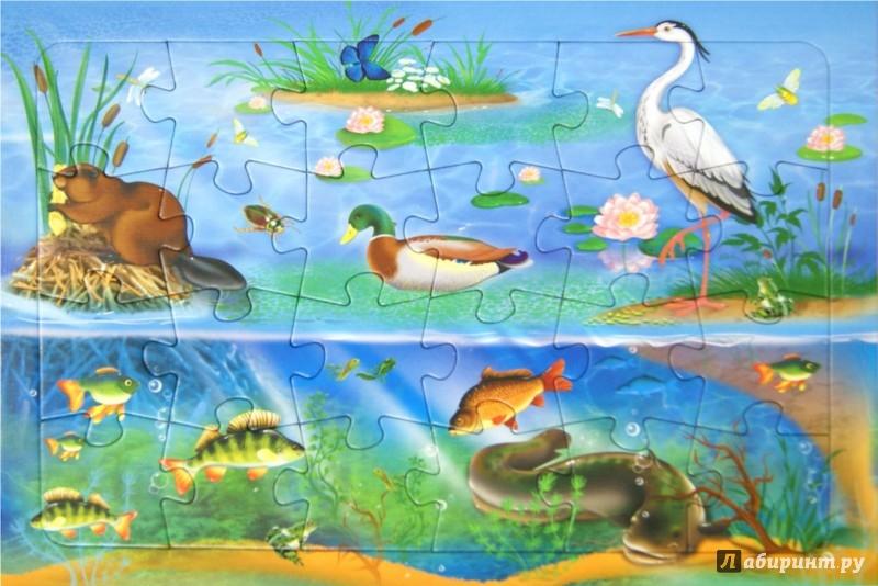 Иллюстрация 1 из 10 для Пазл. В озере. 24 детали | Лабиринт - игрушки. Источник: Лабиринт