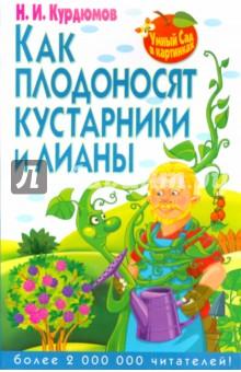 Как плодоносят кустарники и лианы