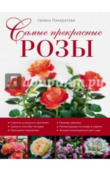 Самые прекрасные розы