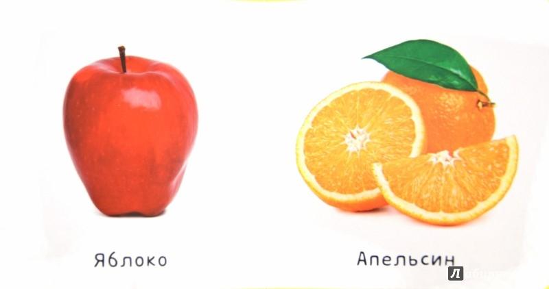 Иллюстрация 1 из 5 для EVA. Фрукты и овощи | Лабиринт - книги. Источник: Лабиринт