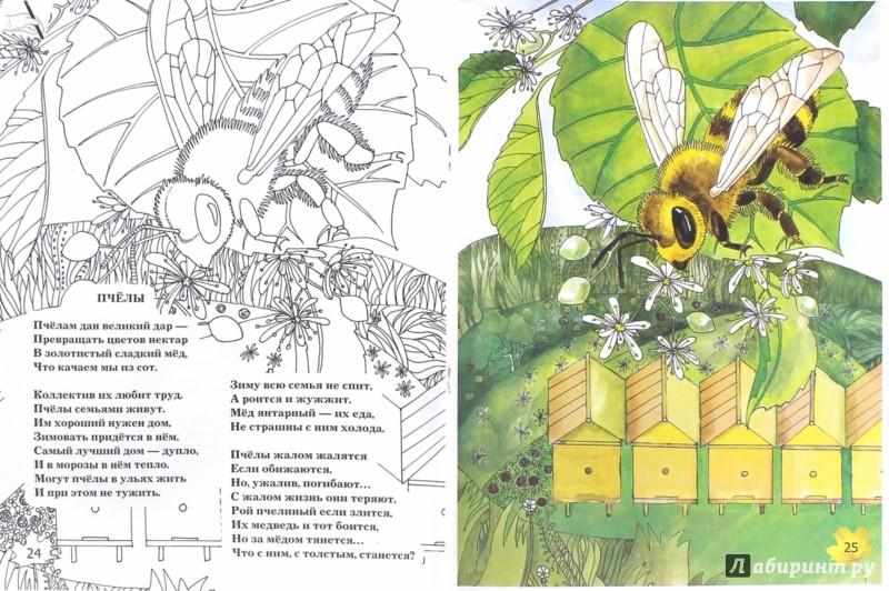 кто есть в журнале насекомые и их знакомые