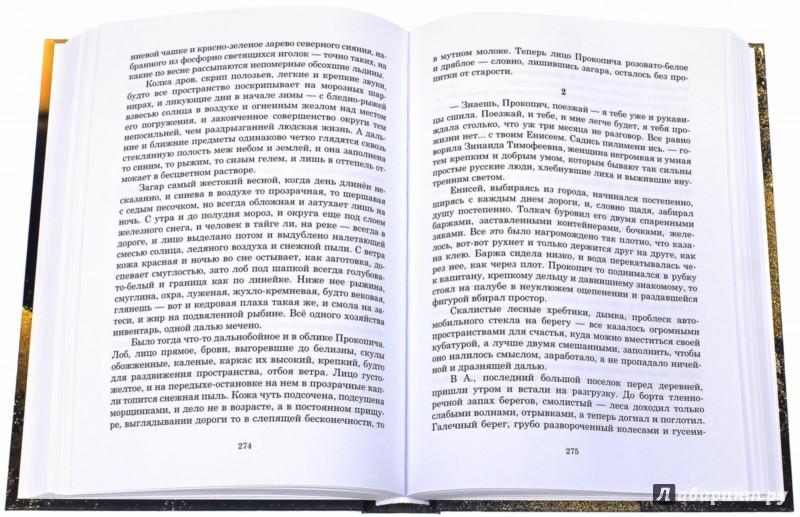 Иллюстрация 1 из 9 для Избранное (+DVD) - Михаил Тарковский | Лабиринт - книги. Источник: Лабиринт