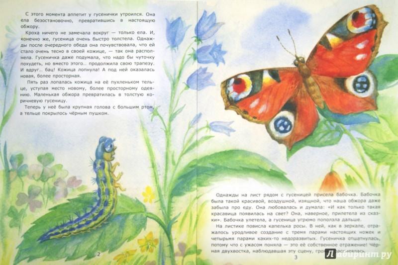 Иллюстрация 1 из 7 для Превращение гусеницы - Лариса Тарасенко | Лабиринт - книги. Источник: Лабиринт
