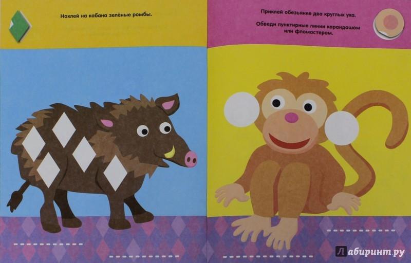 Иллюстрация 1 из 16 для Животные разных стран (с наклейками) | Лабиринт - книги. Источник: Лабиринт