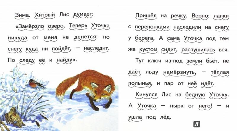 Иллюстрация 1 из 16 для Хитрый Лис и умная Уточка - Виталий Бианки | Лабиринт - книги. Источник: Лабиринт