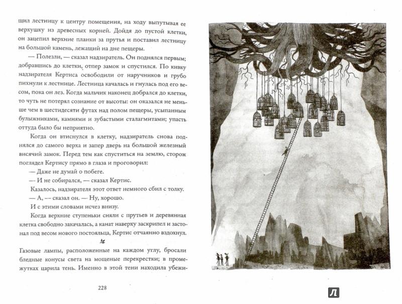 Иллюстрация 1 из 19 для Дикий лес - Колин Мэлой | Лабиринт - книги. Источник: Лабиринт
