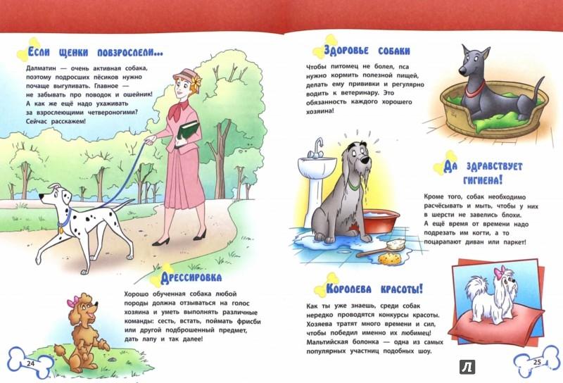 Иллюстрация 1 из 3 для Собаки. 101 Далматинец и другие | Лабиринт - книги. Источник: Лабиринт