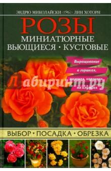 Розы. Миниатюрные. Вьющиеся. Кустовые