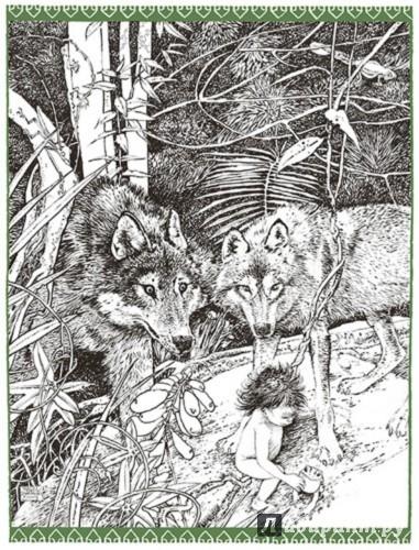 Иллюстрация 1 из 37 для Книга джунглей - Редьярд Киплинг   Лабиринт - книги. Источник: Лабиринт