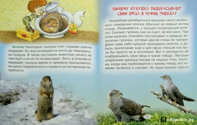 Иллюстрация 1 из 5 для Тайны живой природы - Юрий Гурин   Лабиринт - книги. Источник: Лабиринт