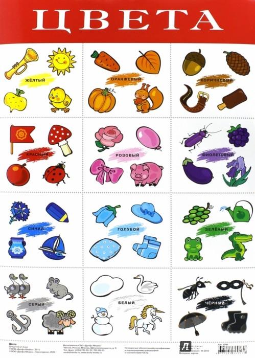 """Иллюстрация 1 из 4 для Плакат """"Цвета"""" (2090)   Лабиринт - книги. Источник: Лабиринт"""