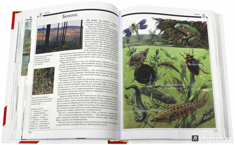 Иллюстрация 1 из 3 для Что такое? Кто такой? Детская энциклопедия в 3-х томах   Лабиринт - книги. Источник: Лабиринт