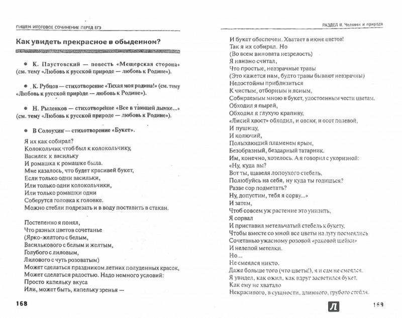 Иллюстрация 1 из 24 для Пишем итоговое сочинение перед ЕГЭ - Елена Амелина | Лабиринт - книги. Источник: Лабиринт