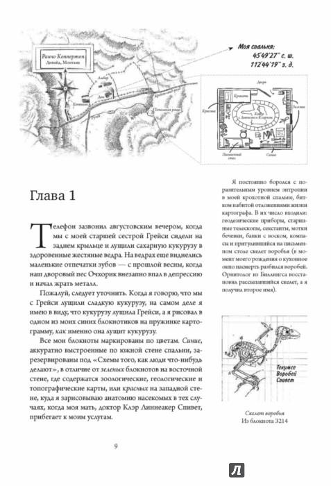 Иллюстрация 1 из 29 для Невероятное путешествие мистера Спивета - Рейф Ларсен | Лабиринт - книги. Источник: Лабиринт