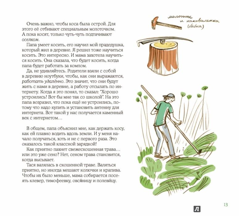 Иллюстрации о лете картинки