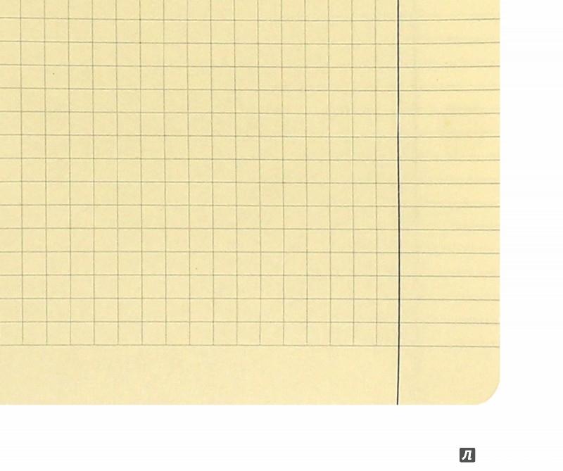 Иллюстрация 1 из 9 для Тетрадь СОВЫ (96 листов, А5, 2 вида) (7-96-050) | Лабиринт - канцтовы. Источник: Лабиринт