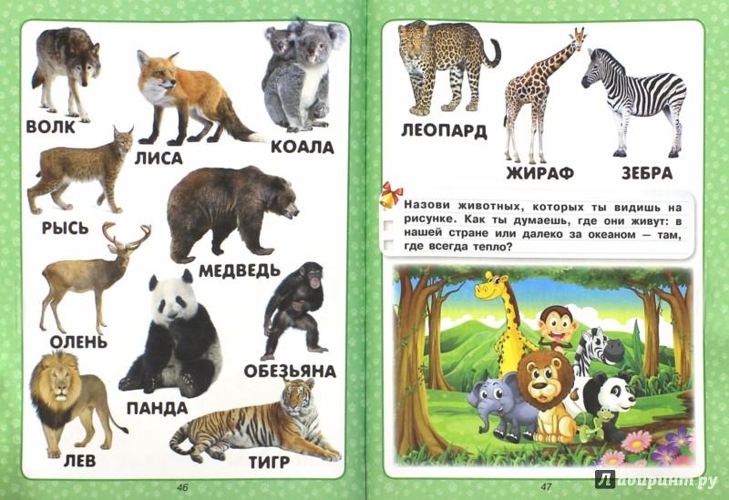 Иллюстрация 1 из 8 для Самая нужная книга для самых маленьких - Елена Хомич | Лабиринт - книги. Источник: Лабиринт